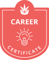 ctu career certificate